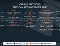 Online Auctions – Tuesday's Calendar 19/10/2021