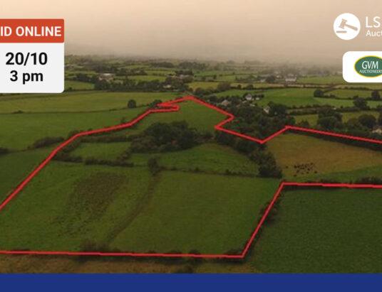 GVM Limerick - Robertstown, Ballyhahill & Shanagolden Demesne, Shanagolden, Limerick