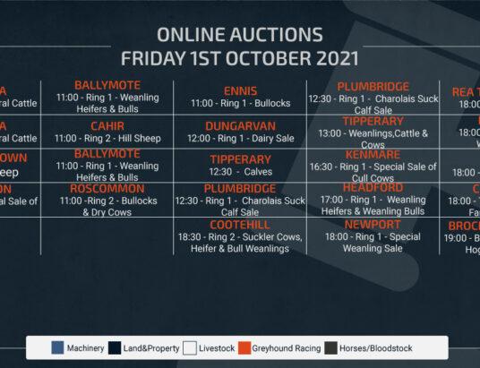 Online Auctions – Friday Calendar 01/10/2021