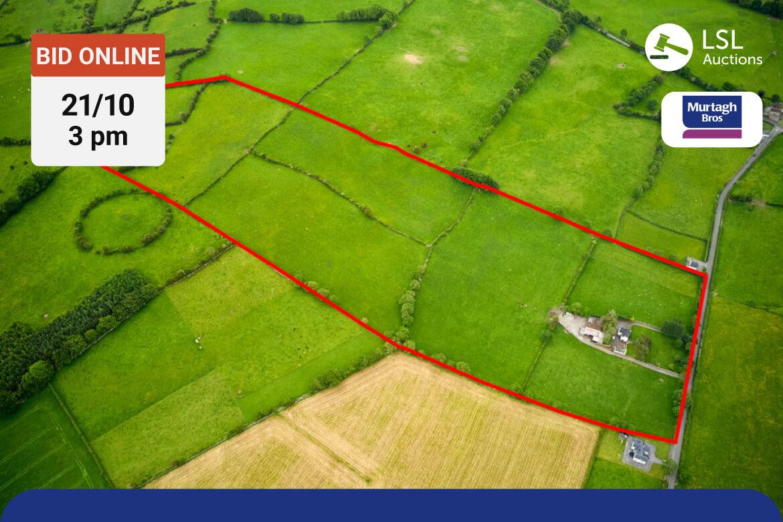 Murtagh Bro's - Skeaghmore, Rathconrath, Mullingar, Co. Westmeath