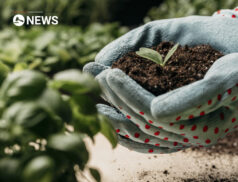 Public voting open for Farming for Nature finals