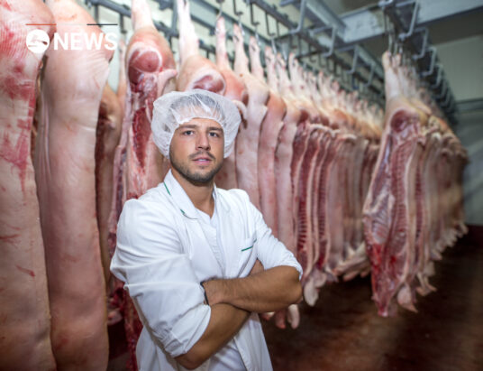 Irish pig-meat sector wants permits for non EU workers to be fast-tracked