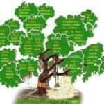 Vedtree
