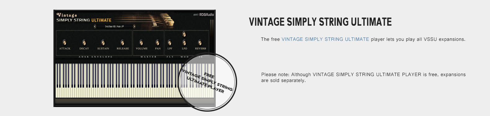 Vintage Simply String Player Only