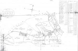The Norton Inclosure Map, 1796