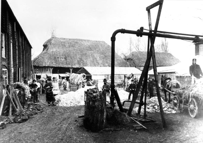 Russell & Featherstone's Yard, Bancroft, Hitchin, about 1880
