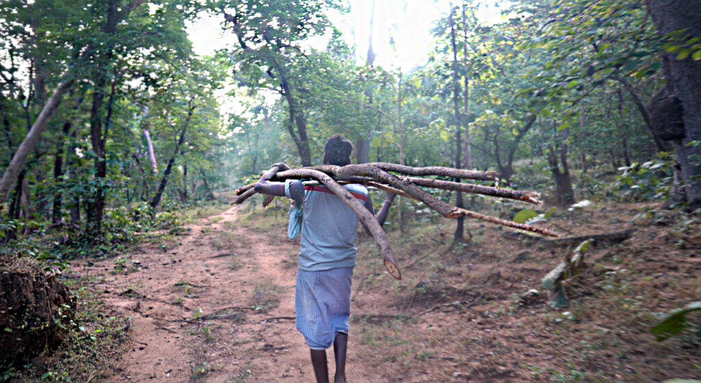 wood collector from Bastar, Chattisgarh