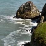 Sea cliffs on Dinas Head