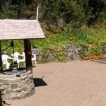 Shell well and the nasturtium garden