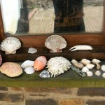 Window sill treasures