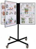 Automotive Steering Linkage Teaching Display Boards Model AM 196