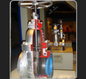 Gate Valve (Cut Section) Model FMCS-GV