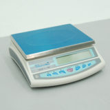 Digital Balances SCTW-0633, SCTW-0635, SCTW-0637, SCTW-0638, SCTW-0640, SCTW-0642, SCTW-0645, SCTW-0648 & SCTW-0654