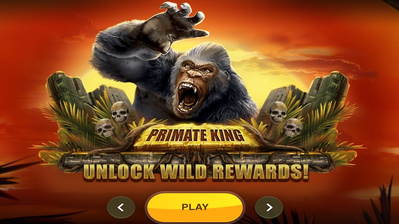 primate king slot rules