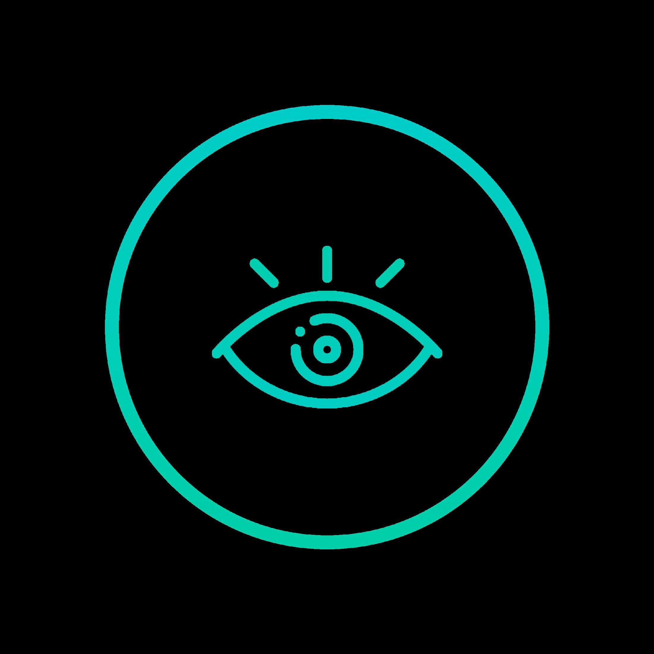 Vission Icon