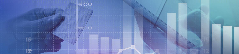 Vital Statistics Accountants - Home Page Banner