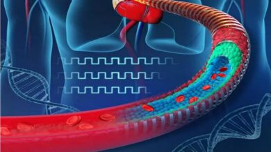 #Scientists #electronic blood vessels# wounds
