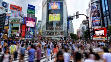 Japan's economy bounces back from recession