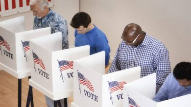 No fraud in presidential election found in Georgia