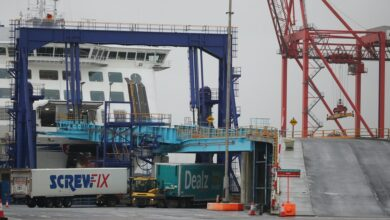 #Brexit: '#Unbelievable #mayhem' coming to #Dublin_port, haulage boss warns despite quiet start to new year