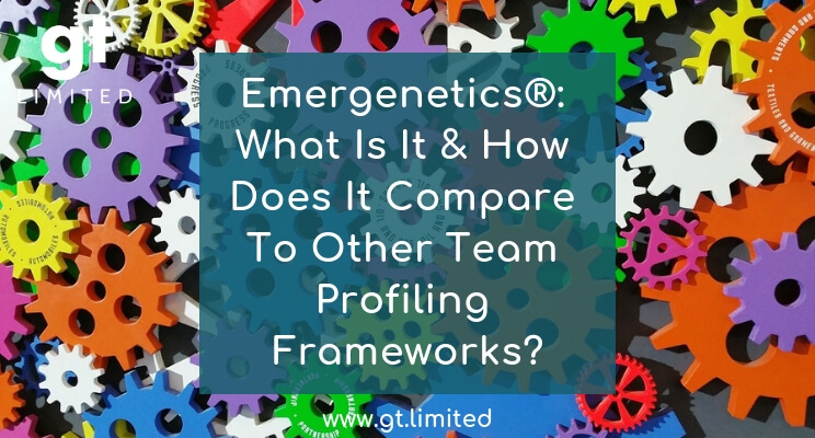 Emergenetics - What Is It & How Does It Compare To Other Team Profiling Frameworks - blog feature image (1) (1)