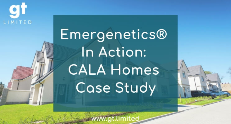 Emergenetics In Action: CALA Homes Case Study