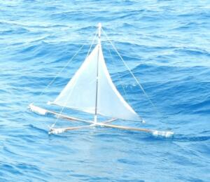 Curious craft spotted well offshore as we sailed past.