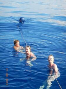 Mid passage swim