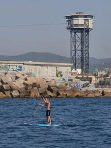 These paddleboarders are everywhere