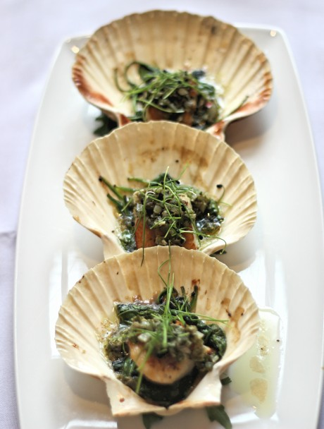CAPESANTE - KING SCALLOPS ROASTED ON THE HALF SHELL WITH BABY SPINACH AND SALSA VERDE