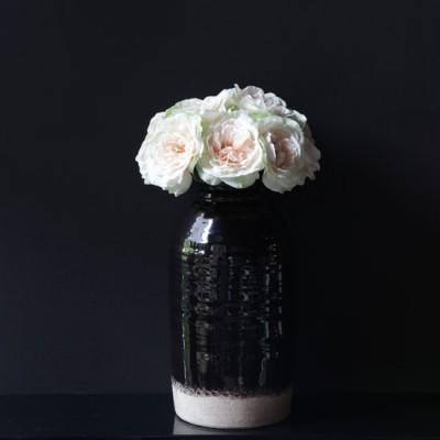 Rose-Champagne-32cm_grande