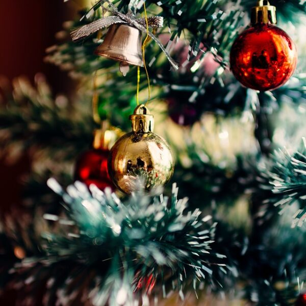 should you put christmas tree up in november