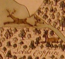 Detail from early modern map of Rockingham Forest
