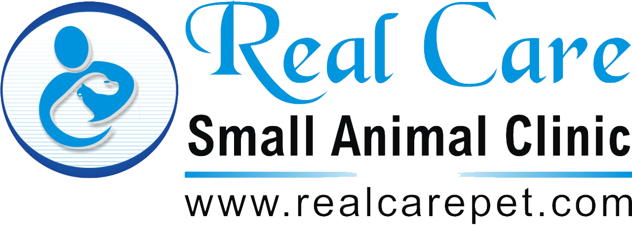 Real Care Small Animal Clinic Dr. Makarand Dixit