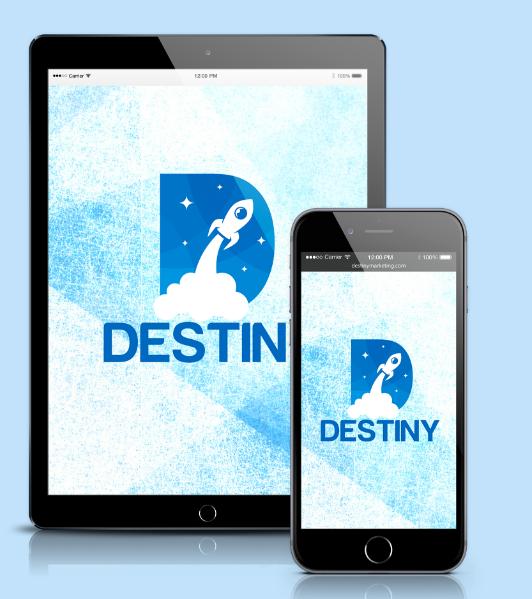 Destiny Review & HUGE Bonus Collection