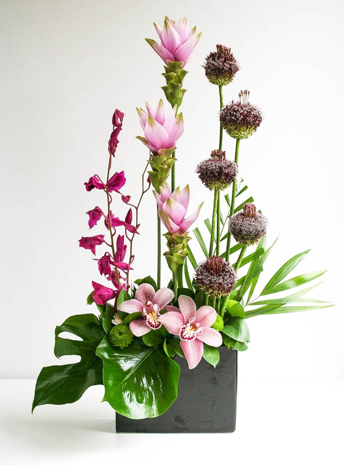 orchids, and allium contract flowers