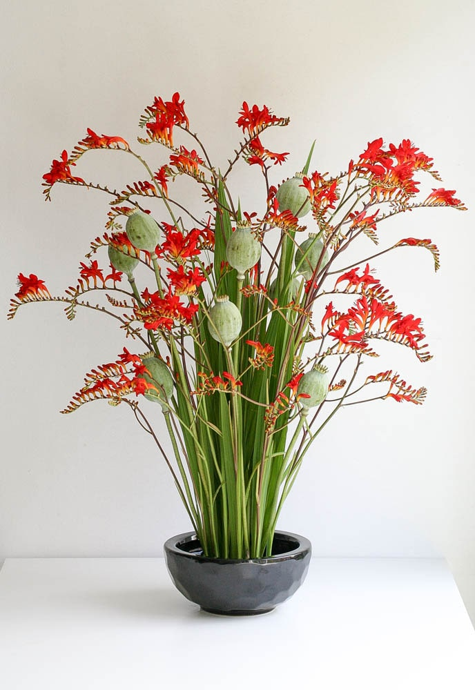 Crocosmia and poppy heads arrangement for the office reception