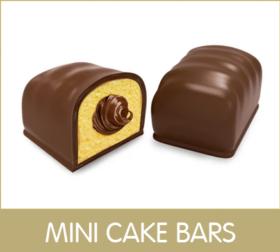 frame MINI CAKE BARS