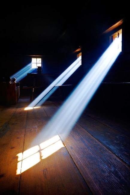 Padmabandhu Window light