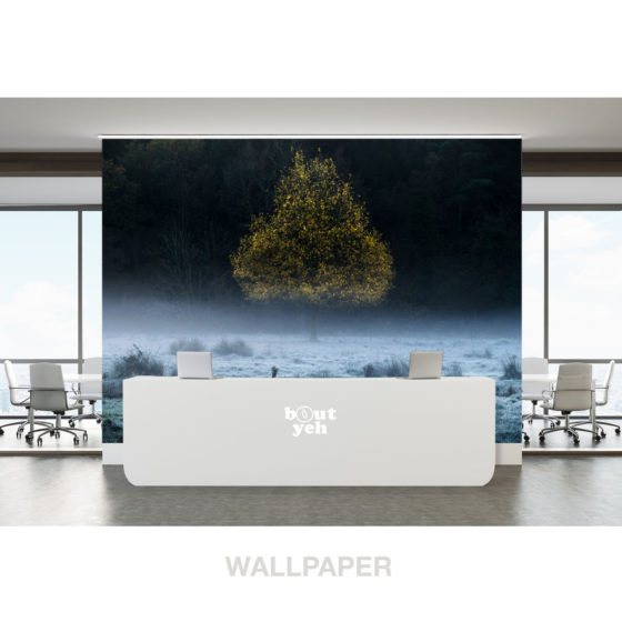Pear Shaped Tree 2 landscape photo of Ireland photographic wallpaper.
