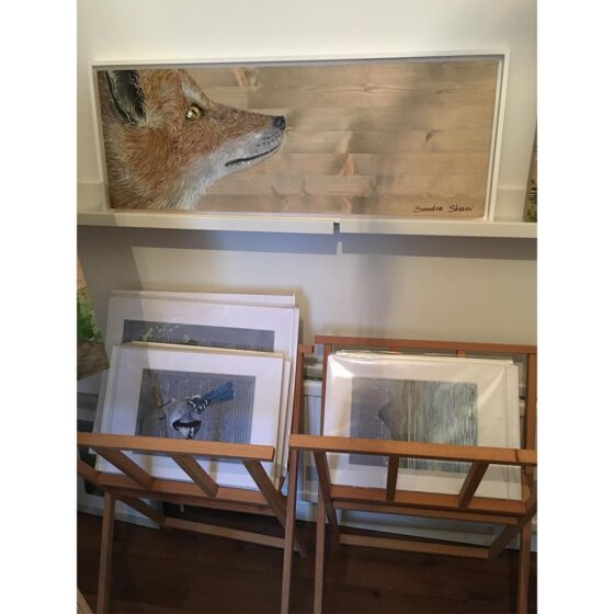 Painting for sale by Irish artist Sandra-Shaw, Looking Up