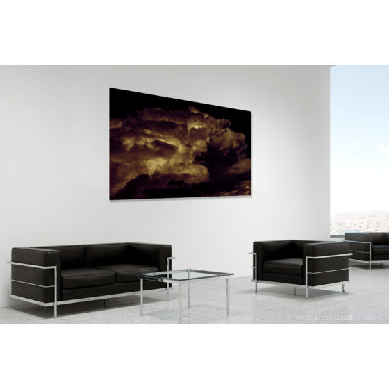 Sky Pig Fine Art Photograph by Stephen S T Bradley For Sale Photo In Room Setting