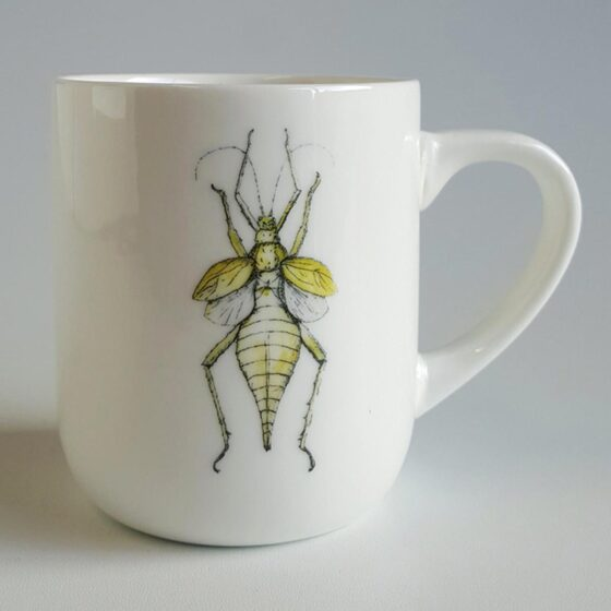 Leaf Insect ceramic mug. Irish ceramics and porcelain for sale by Bout Yeh art and crafts gallery Belfast and Dublin, Ireland