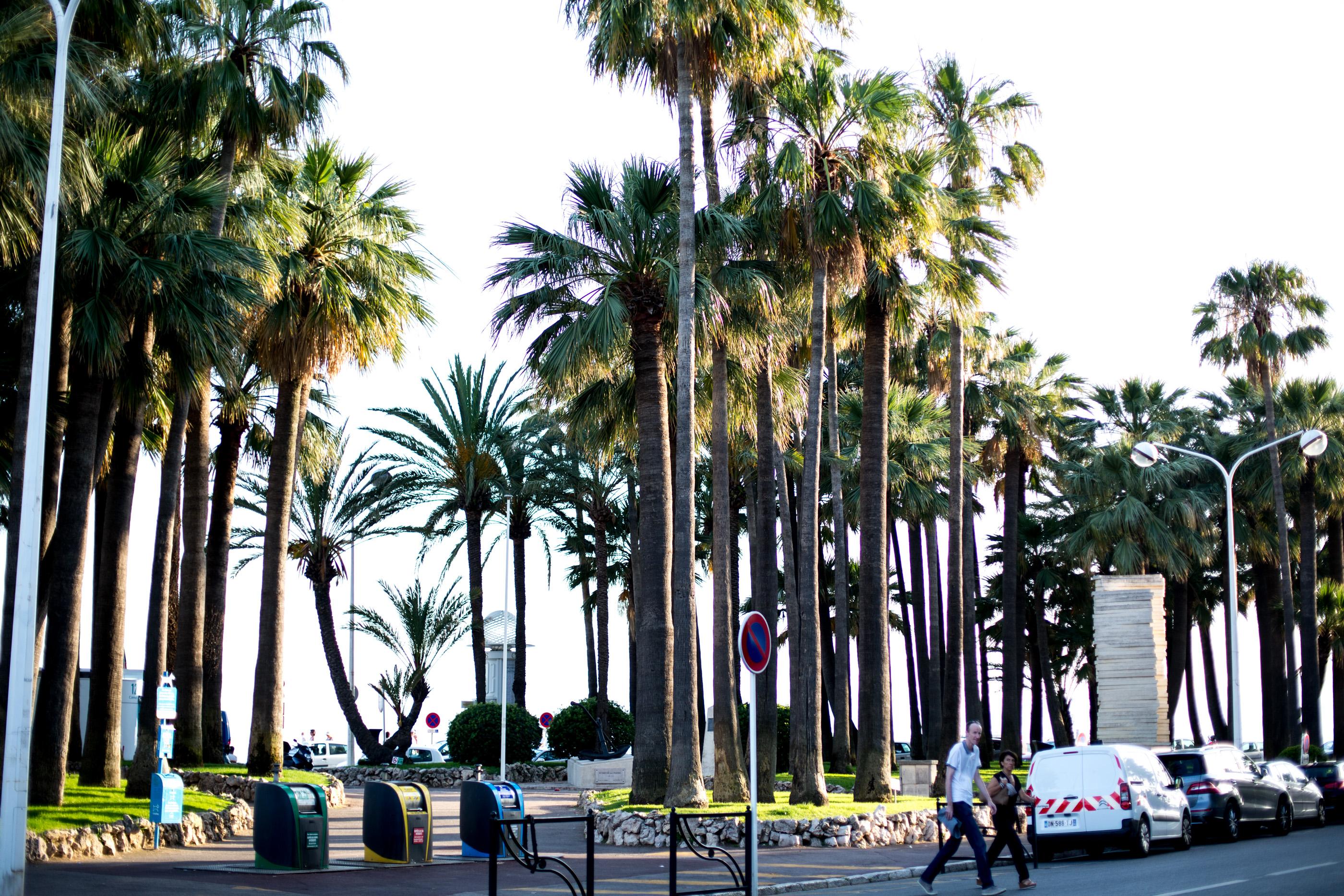 Mediamarmalade_Cannes_2016-160