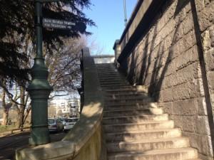 Kew-11-steps