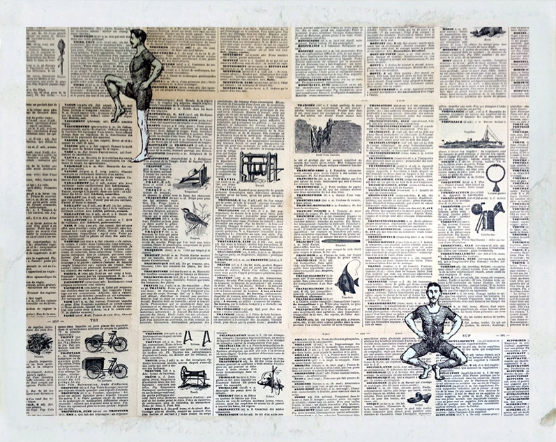 wallpaper created by decoupaging wall with petit larousse french dictionary, closeup