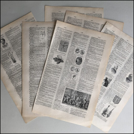 collage kit: original pages from Larousse Illustrated Encyclopaedia, vintage book, decoupage, scrapbooking