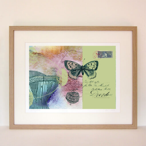 framed giclee print of a crset, a butterfly, maps of the tropics, handwriting and a vintage stamp