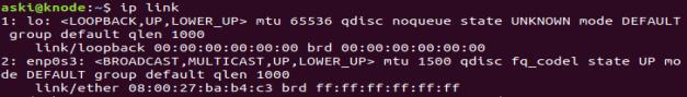 ip link MAC address
