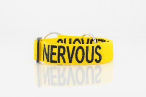 nervous dog collar large